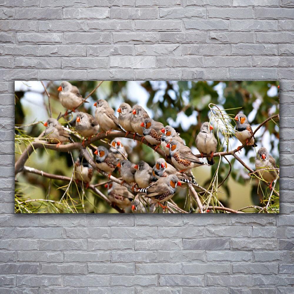Photo sur toile Tableau Image Impression 120x60 Animaux Oiseaux