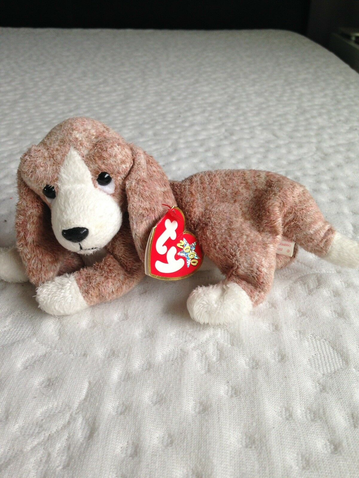 Ty Beanie Babies collection 'Sniffer' 2000