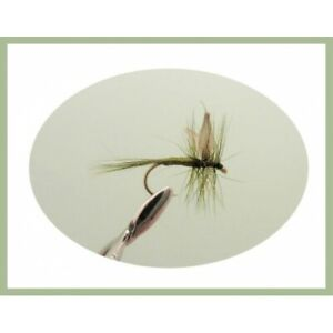Olive-Dry-Truite-Mouches-12-Pack-Dark-olives-mixte-taille-10-12-14-16-Fishing-Flies