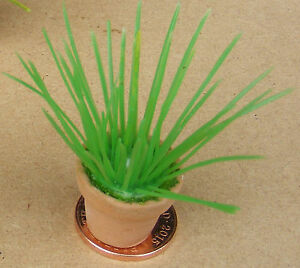 100% Vrai Échelle 1:12 Vert Clair Plastique Plante Dans Une Terre Cuite Pot Tumdee Maison De Poupées Cb5-afficher Le Titre D'origine RéTréCissable