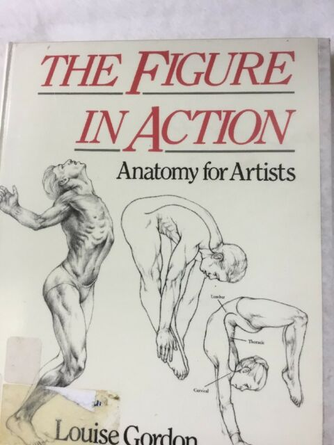 The Figure In Action Anatomy For The Artist By Louise Gordon 1991