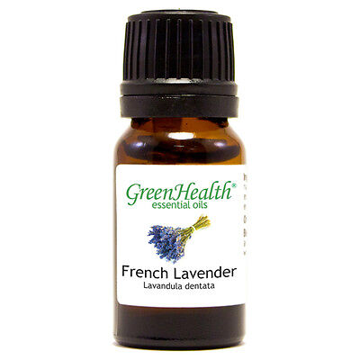 5 ml French Lavender Essential Oil (100% Pure & Natural) - GreenHealth
