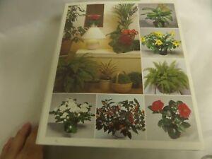 Amazing Success With House Plants 2 Ring Binder S Flower Care Ebay Interior Design Ideas Clesiryabchikinfo
