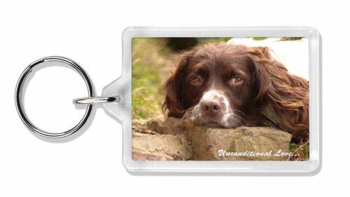 Springer Spaniel 'Unconditional Love' Photo Keyring Animal Gift, AD-SS1uK