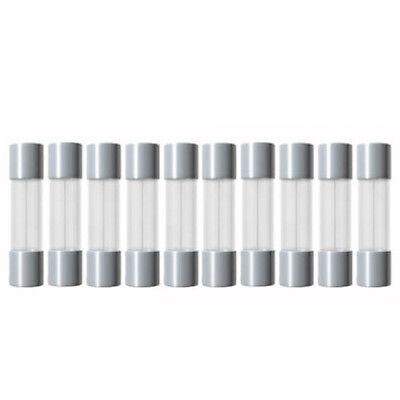 30A 5x20mm Feinsicherung flink Sicherung Glassicherung 250V 0,1A