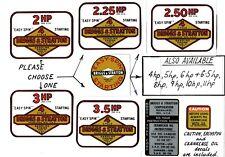 Briggs & Stratton Vintage Minibike Engine Decals
