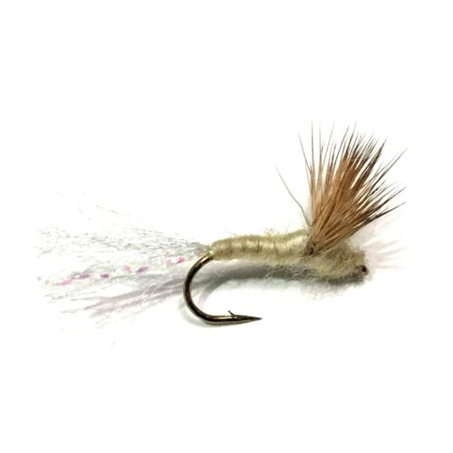 Salmon 6 x Cream Sparkle Dun Dry Fly Fishing Flies For Trout