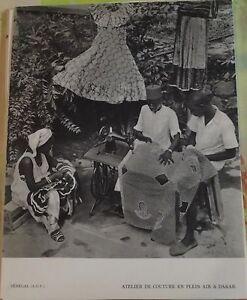 1954-Senegal-A-O-F-Atelier-de-Couture-en-plein-air-a-Dakar
