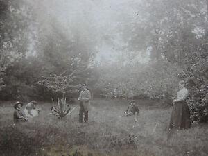Photographie-ancienne-Moment-de-detente-dans-un-parc-Photo-famille-16-x-12-5-cm