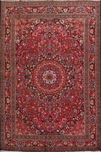 Vintage-Floral-Mood-Classic-Area-Rug-Wool-Hand-Knotted-Traditional-Carpet-7-039-x11-039