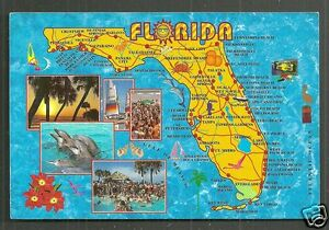 Map Of The State Of Florida.Map Postcard Florida Dolphins Beach Sunshine State Fl Usa Stamp Ebay
