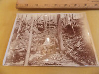 Orig 1898 Photo BRONX PARK NYC New York City Albumen 5 x 7 Vintage!! NICE!!!