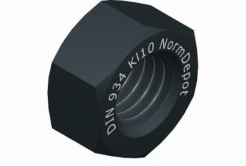 10 Stück M 10 Muttern nach Wahl DIN 934 Kl10 DIN 934 A4 DIN 982 A4 DIN 1587 A4