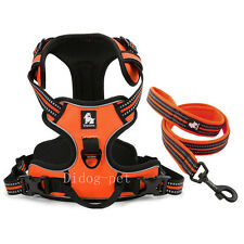 869028151e483 item 4 Truelove Reflective Padded Dog Harness & Leads Set for Small Medium Large  Dogs -Truelove Reflective Padded Dog Harness & Leads Set for Small Medium  ...