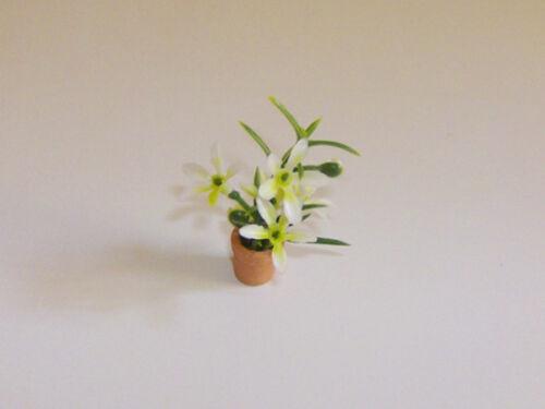 1:12 Blühpflanze weiss im Topf 1cm für die Puppenstube BL2015