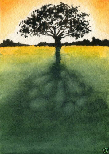 SUNLIT TREE Giclee 5 x 7 Art Print on W//C Paper Signed by Artist DJR