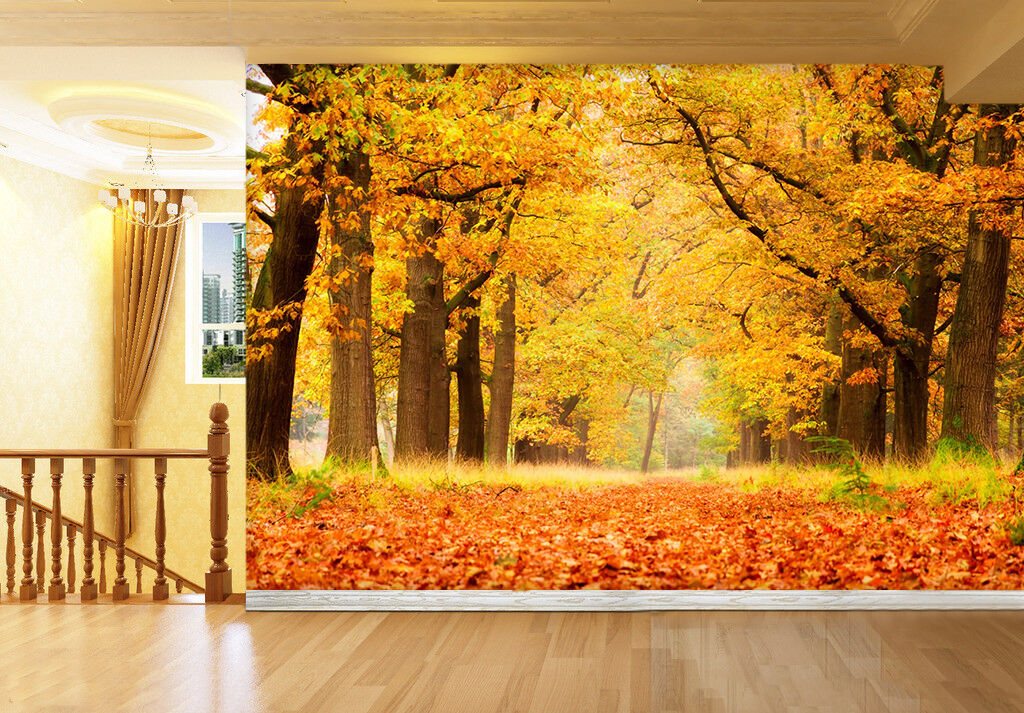 3D Autumn Forest Path 737 Wall Paper Wall Print Decal Wall Deco Art Indoor Wall