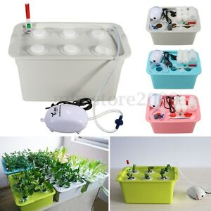 Details About 6 Holes Plant Site Hydroponic System Grow Kit Bubble Indoor Garden Cabinet Box
