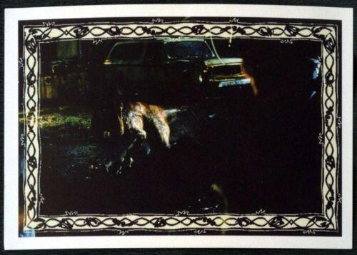 #198 Jurassic Park The Lost World 1997 Merlin Sticker C1248
