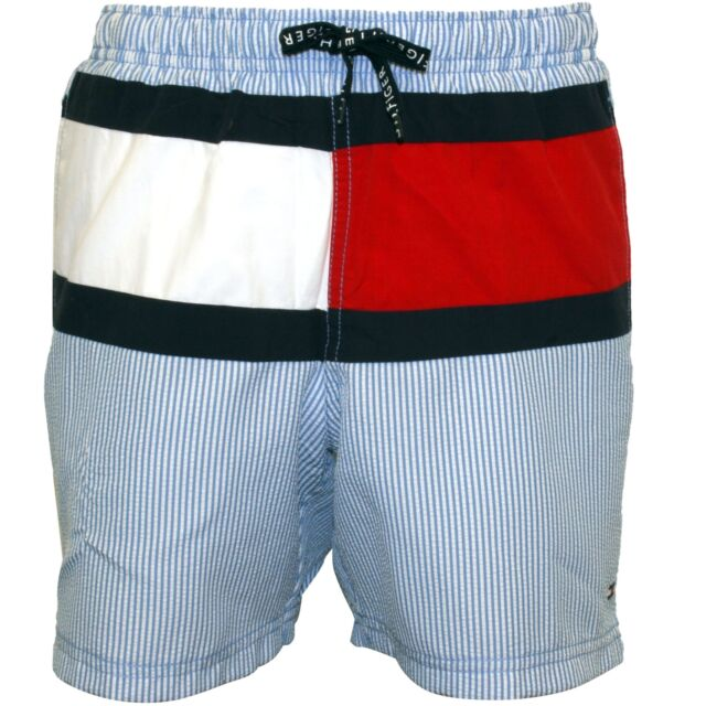 Tommy Hilfiger Ithaca Stripe Flag Logo Boys Swim Shorts, Blue