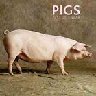 2017 Calendar Pigs by Peony Press 9780754832515 (calendar 2016)