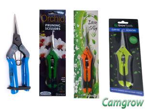 Bud Clean Ciseaux-droite ou courbe & Bonsai & Orchid-Parage ciseaux-afficher le titre d`origine hfJ5W3wX-07212944-359183200