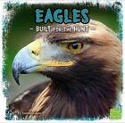 Eagles Built for The Hunt 9781491488423 by Tammy Gagne Hardback