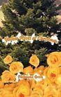 Yellow Roses at Christmas by Philomena Green 9780759651661 Paperback 2001