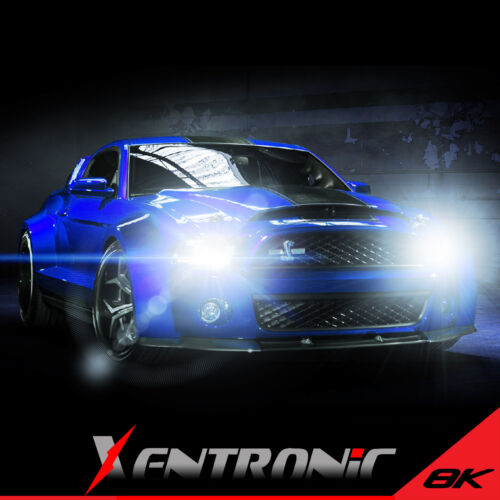 8000K HID XENON H11 LOW//LO BEAM HEAD LIGHTS BULBS L+R CONVERSION KIT+BALLAST