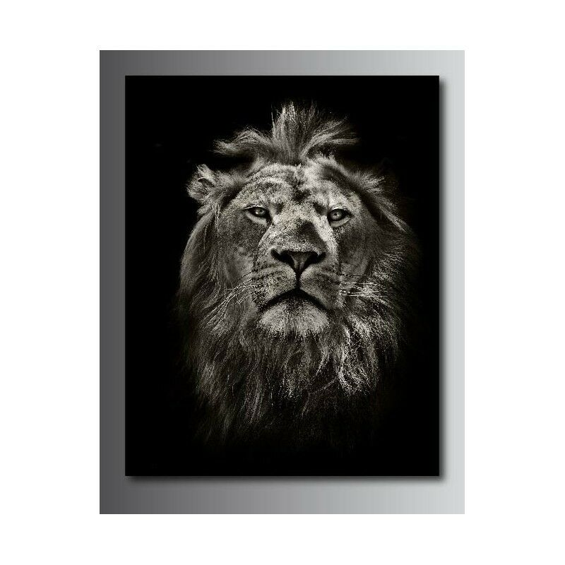 Tableaux toile toile toile déco rectangle verdeicale lion  120894148 0d790c