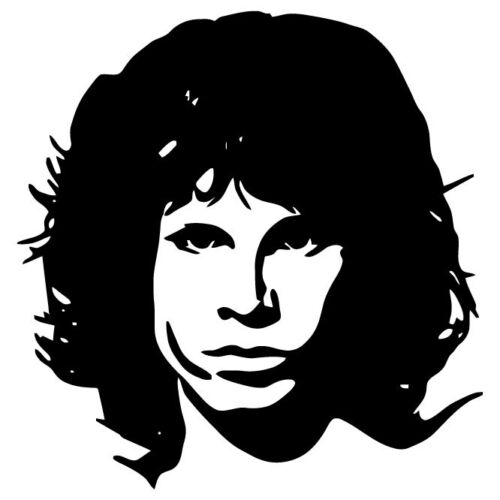 Jim Morrison Vinyl Decal Sticker The Doors Livre Record the lizard king rock roll