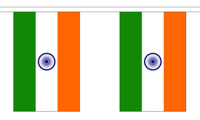 INDIA 3 METRE BUNTING 10 FLAGS flag 3M INDIAN BOMBAY DELHI
