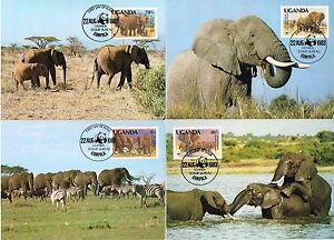 4-TARJETAS-MAXIMAS-WWF-MAXICARD-MAXIMUM-COMPLETA-FAUNA-UGANDA-ELEFANTES-ELEPHANT