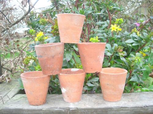 "6 Old Vintage Hand Thrown Terracotta Plant Pots 3.25/"" Diameter Auricula Pots 12"