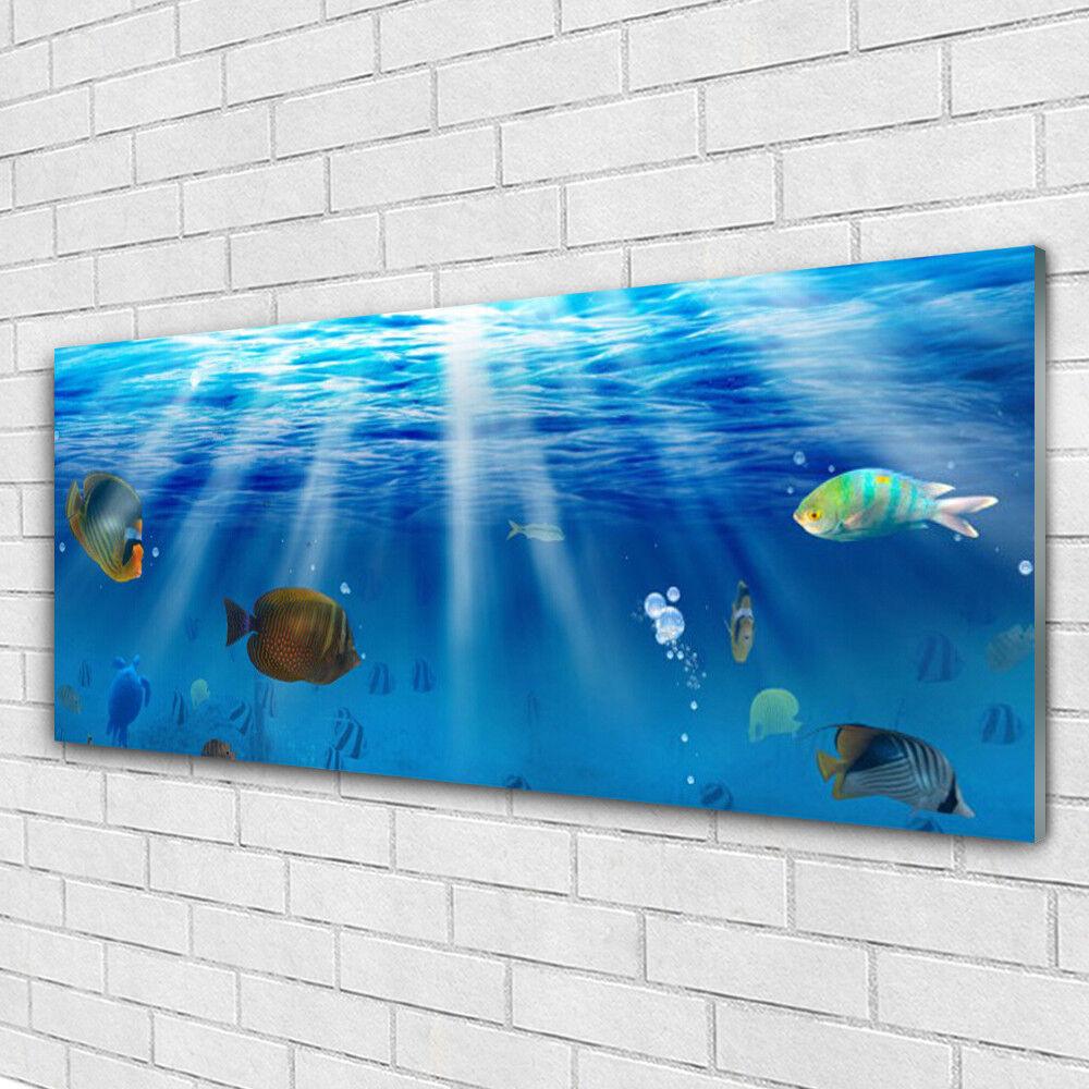 Impression sur verre Image tableaux 125x50 Nature Poissons