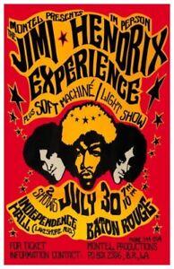 Jimi Hendrix Psychodelic Concert 11x17 Mini Poster