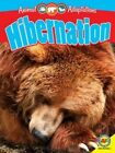 Hibernation by Pamela McDowell (Hardback, 2015)