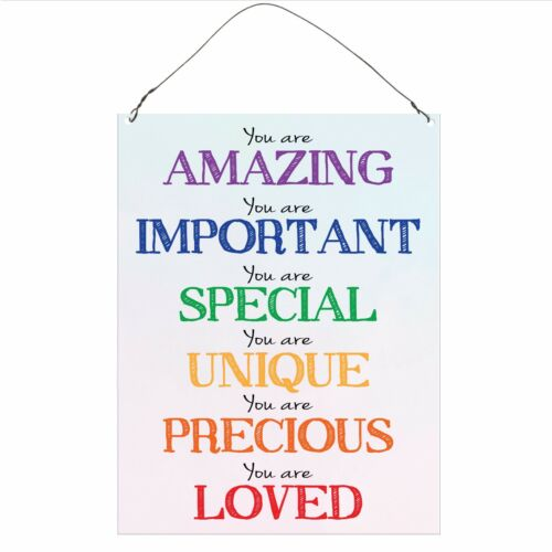 You Are Amazing Inspirational Funny Retro Vintage Wall Metal Plaque Sign 15x20cm