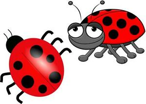 Image Is Loading 2 X CARTOON LADYBIRD IRON ON T SHIRT