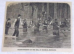 small-1882-magazine-engraving-SALMON-SPEARING-ON-THE-DEE-Braemar-Scotland