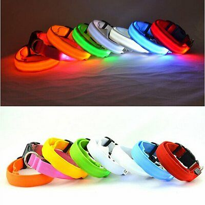 Light Up LED Dog Collar Pet Flashing Safety Night Glow in the Dark 7 Colors