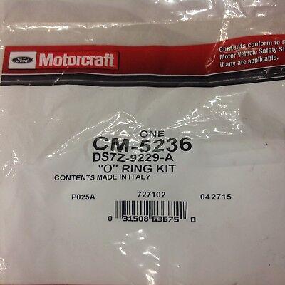 Motorcraft CM5268 O-Ring Kit