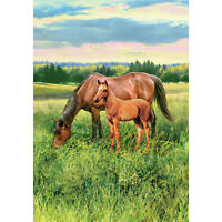Horse Pasture Decorative Flag