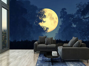 Image Is Loading Golden Moon Dark Night Sky Forest Wall Mural