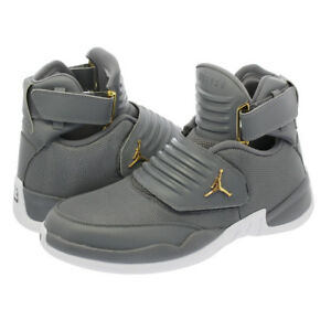 237abada5b6fd9 SALE AIR JORDAN GENERATION 23 COOL GREY WHITE GOLD SZ 8-14 NEW ...