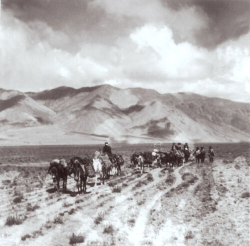 Reprint 5x5 inches Newar Caravan Merchants Tibet 1943 Vintage Photograph