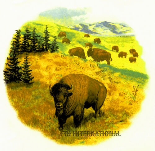 Plains Scene 4 sizes to choose from, Bison A03 ~ Buffalo Herd Ceramic Decals