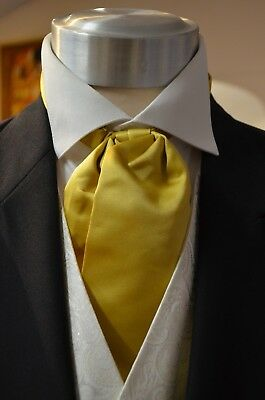 Pre-Tied Adjustable Classic Cravat Ivory Wedding Formal Prom