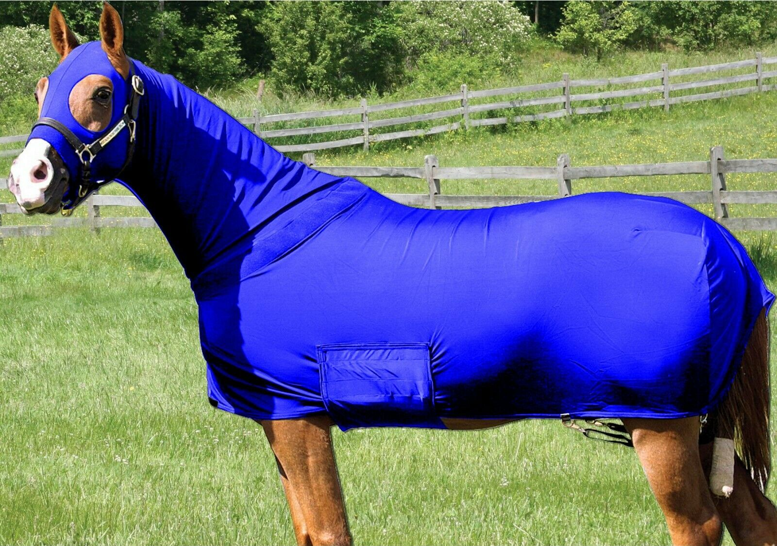 Horse Sleazy Full Body Sheet    Blanket W  Full Separating Zip X-LARGE   R. blueE  outlet on sale