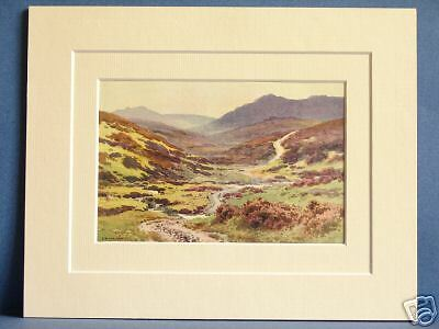 DEVIL/'S BRIDGE DARTMOOR DEVON 1930s VINTAGE MOUNTED PIC
